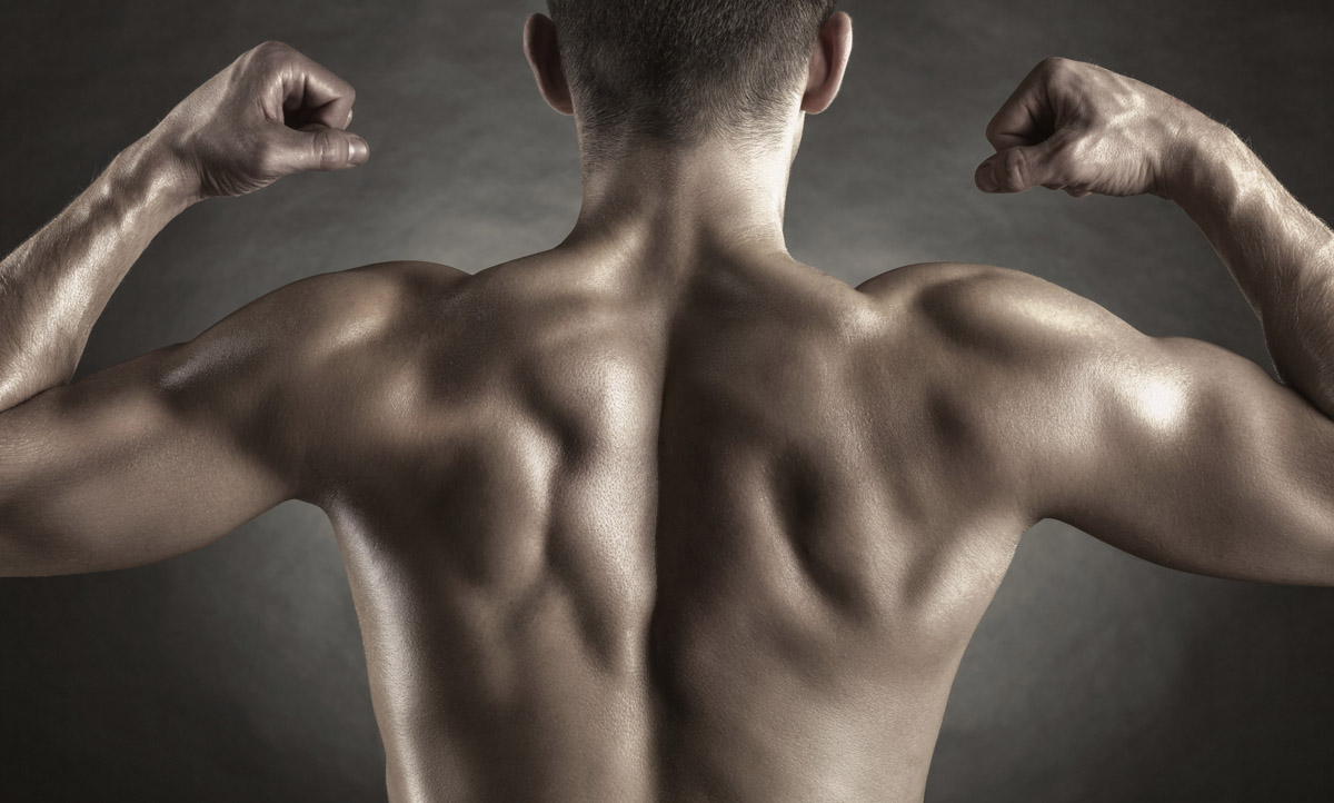 Comment muscler ses lombaires ?